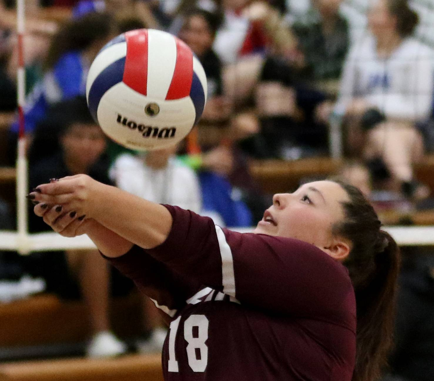 Elgin's Cory Zapata passes the ball in varsity girls volleyball at Larkin on Wednesday.