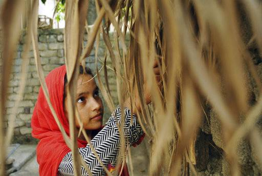 In this Tuesday, August 13, 2018, photo, Ansa Khan sifts through dry sugarcane peel and for use as firewood in Mardan, Pakistan. At just 10 years old, her day is a hectic one. At the first hint of dawn, she is up saying her morning prayers before reading her Quran, Islam's holy book. Those are Ansa's quietest moments. After that her day is a whirl of chores, school, studying and the occasional moments stolen away to play marbles.