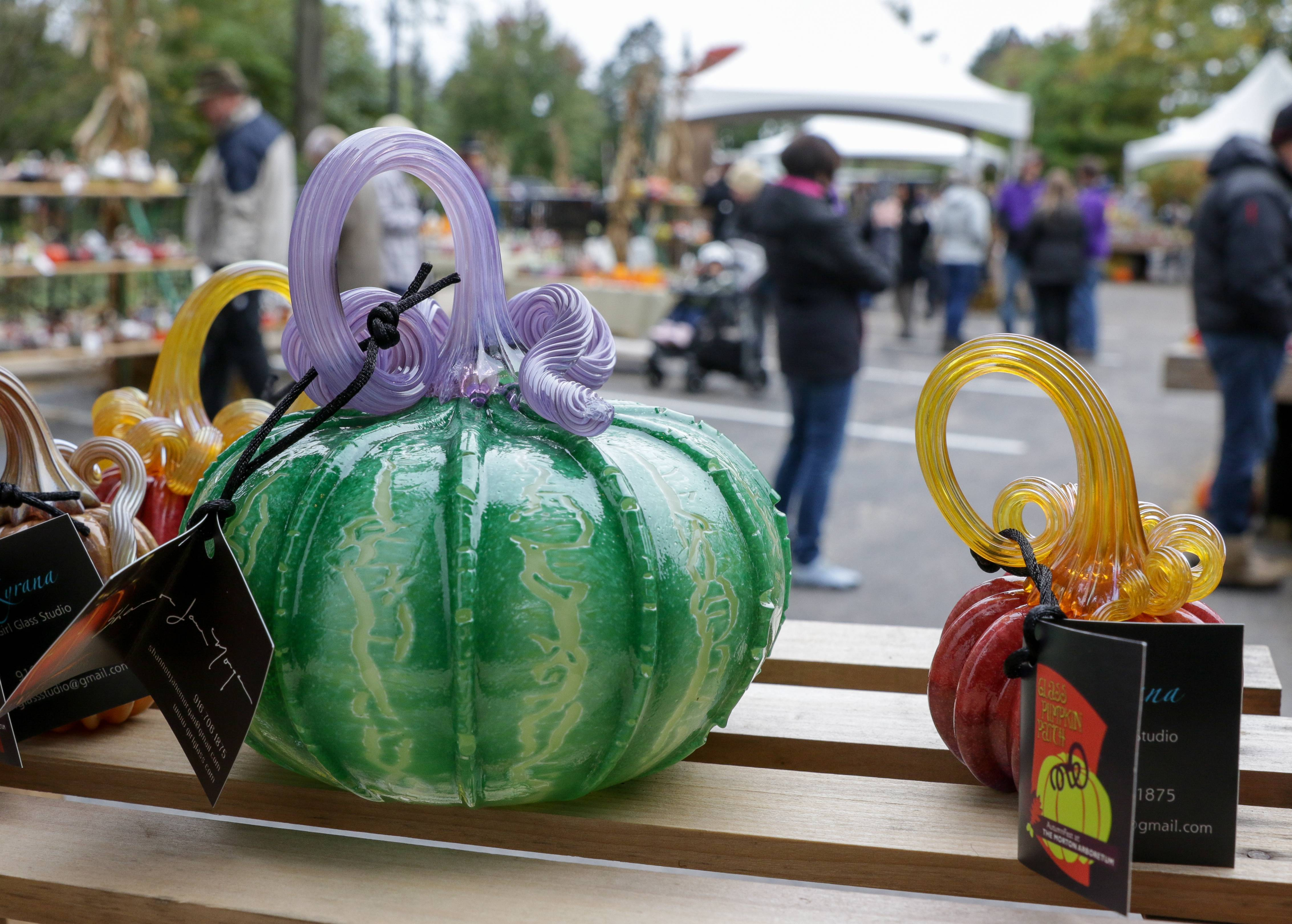 Glass pumpkins on display by feature artist Shannon Jane Morgan at the eighth annual Glass Pumpkin Patch at the Morton Arboretum in Lisle on Friday.