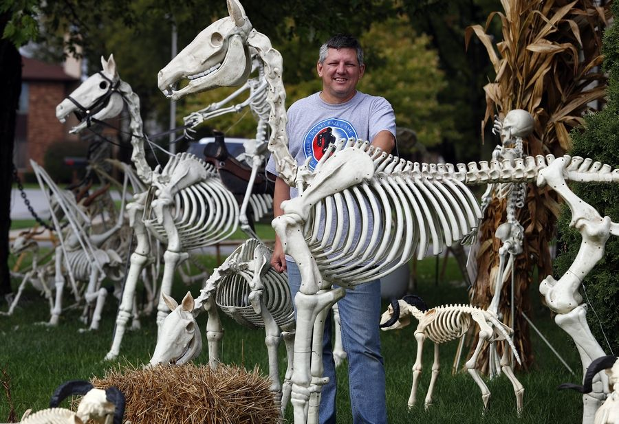 Tom Schaefer, shown here, and his wife, Cathy, have decorated their South Elgin condo yard with more than 82 skeletons ranging from 1½-inch fairies to 6-foot horses.