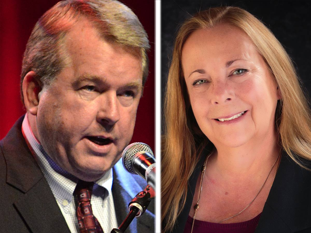 GOP incumbent Donald DeWitte and Democrat Nancy Zettler are candidates for the 33rd state Senate District seat.
