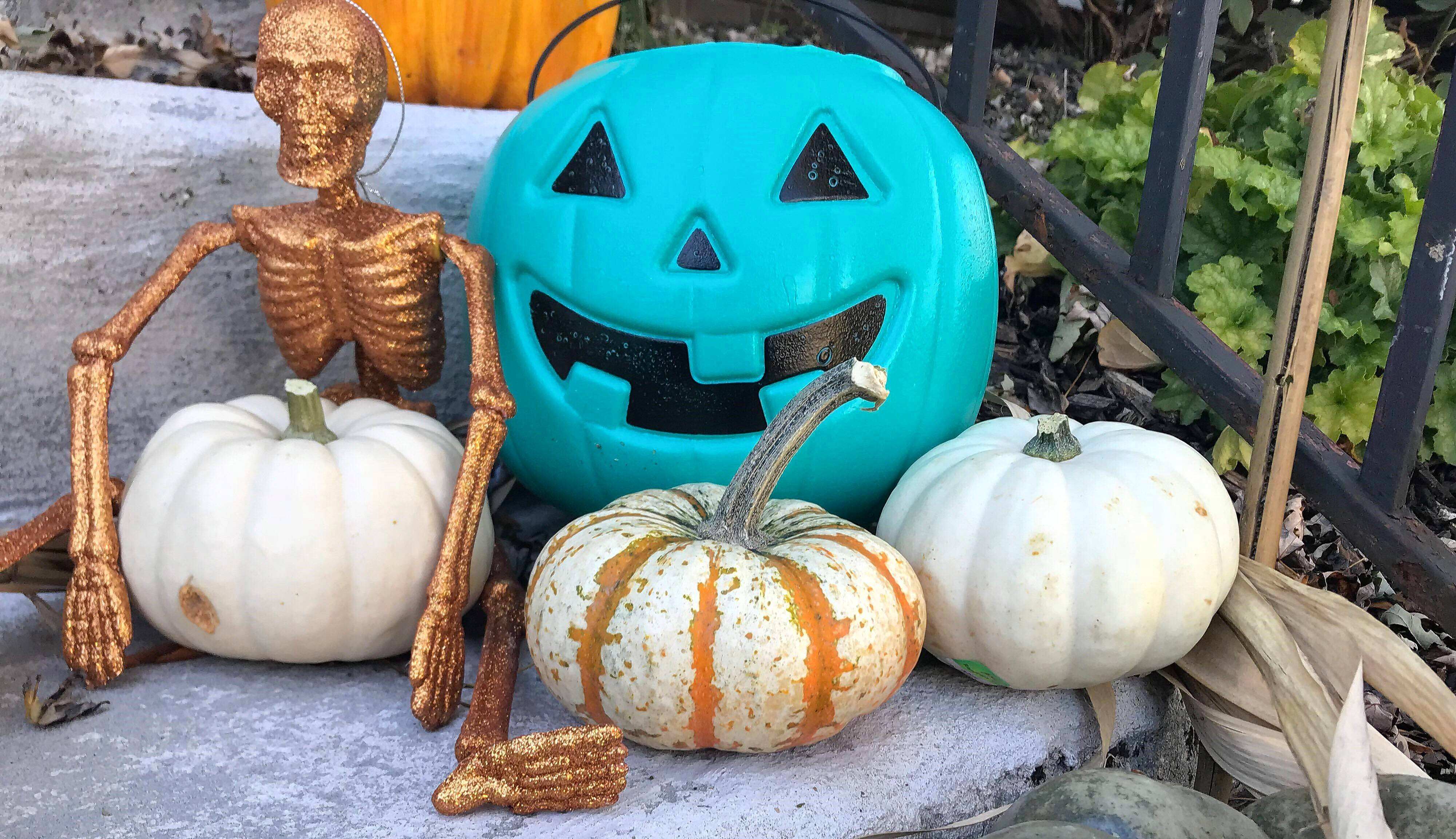 What a teal pumpkin on the porch means for trick-or-treaters with allergies