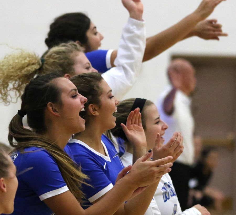St. Charles North players cheer during a win over Streamwood in regional play in varsity girls volleyball at St. Charles North Tuesday night.