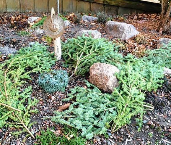 Put your garden to bed before heading inside