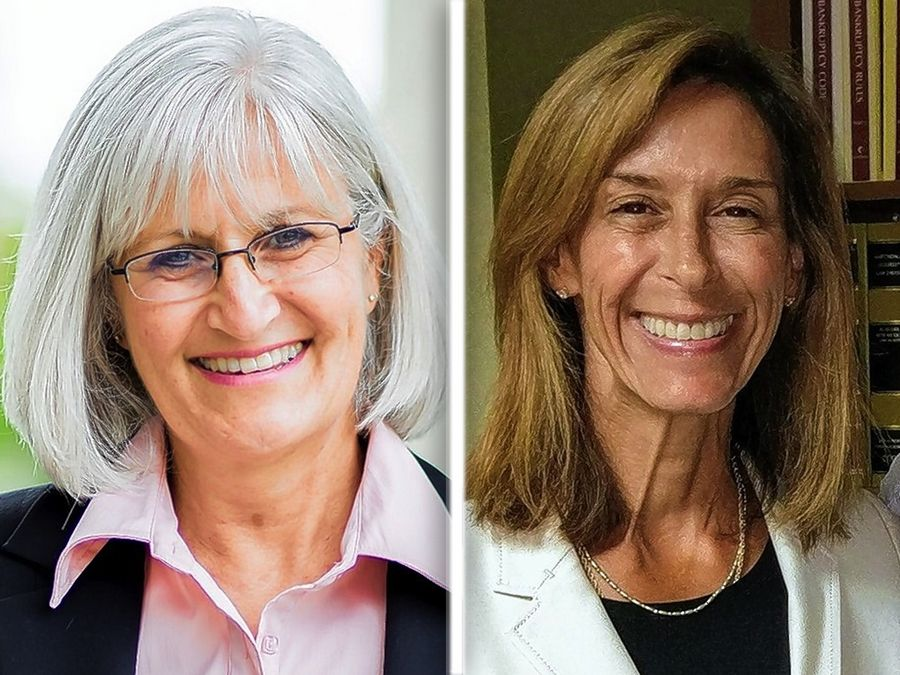 Mary Edly-Allen, left, and Helene Miller Walsh, right, are candidates for the 51st Illinois House.