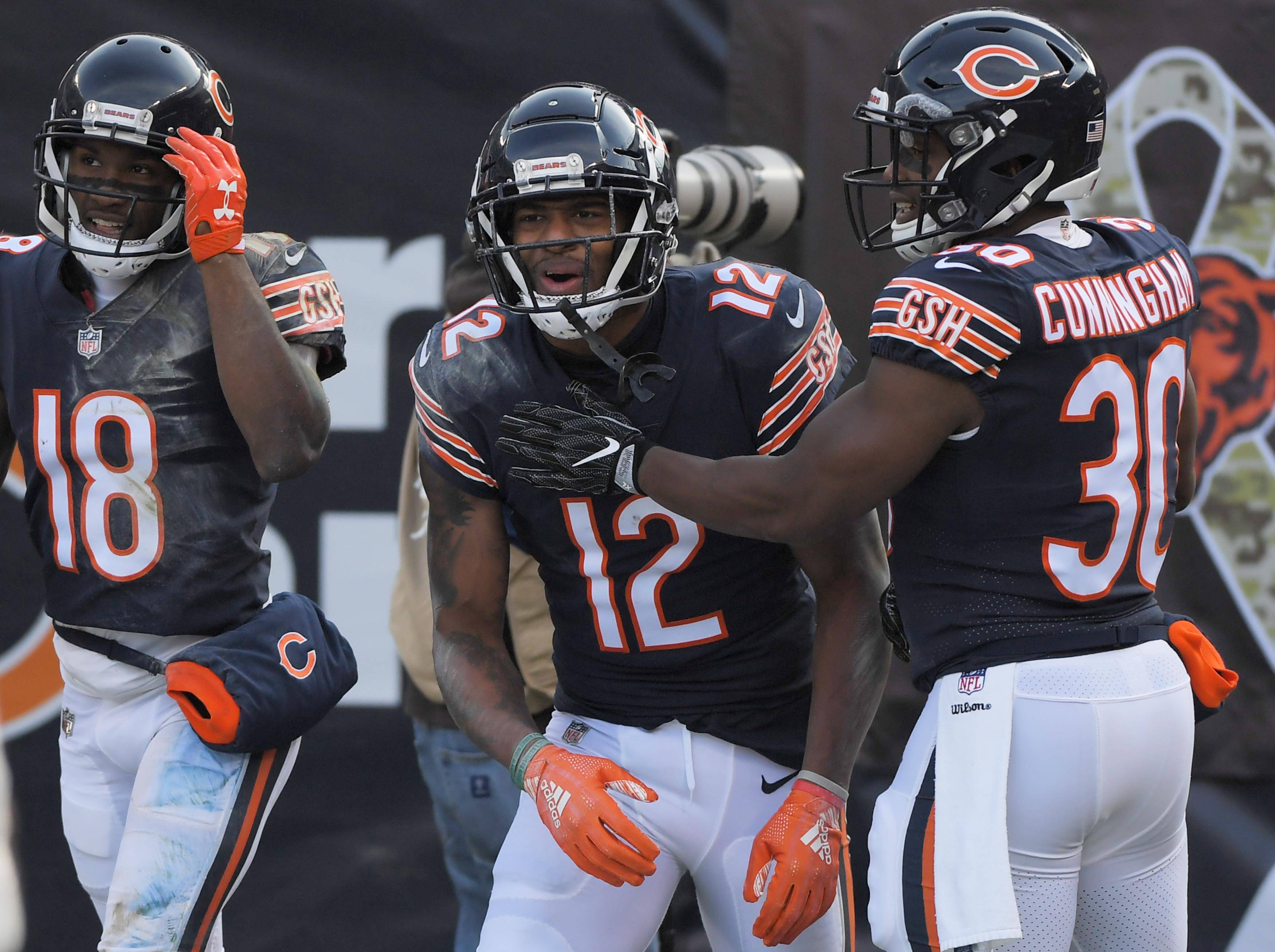John Starks/jstarks@dailyherald.comChicago Bears wide receiver Allen Robinson celebrates his touchdown catch against the Detroit Lions Sunday at Soldier Field in Chicago.