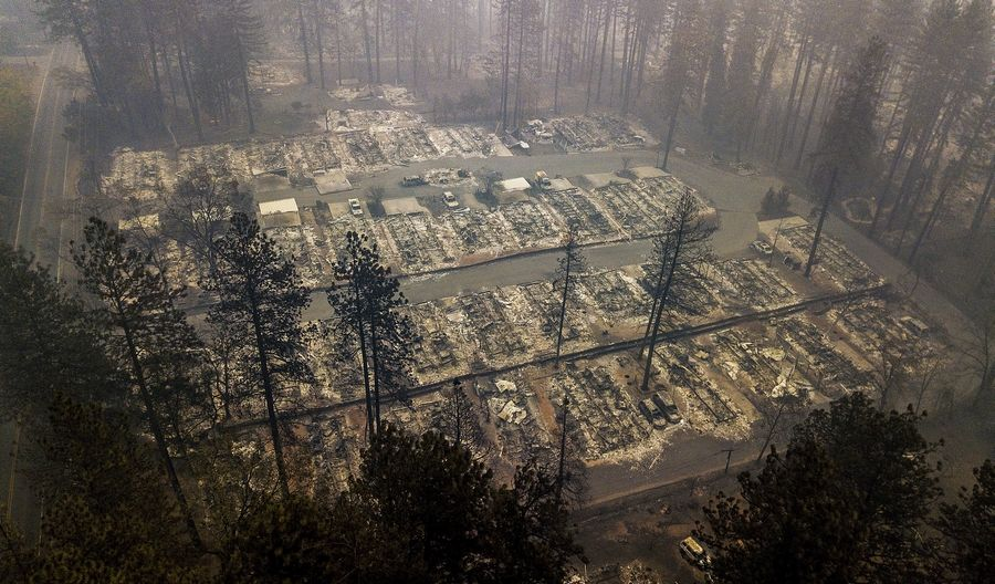 Residences, if not all the trees, were leveled by the wildfire line in a neighborhood in Paradise, Calif.