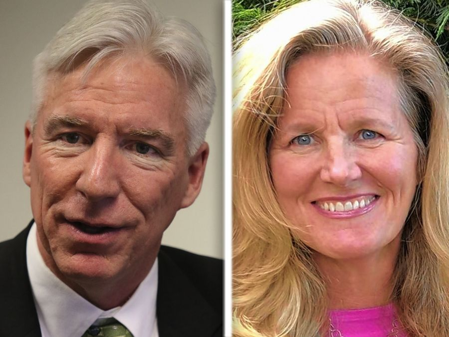 Democratic challenger Laura Ellman has defeated GOP incumbent Michael Connelly in the race for state Senate District 21 based on final vote totals announced Tuesday.
