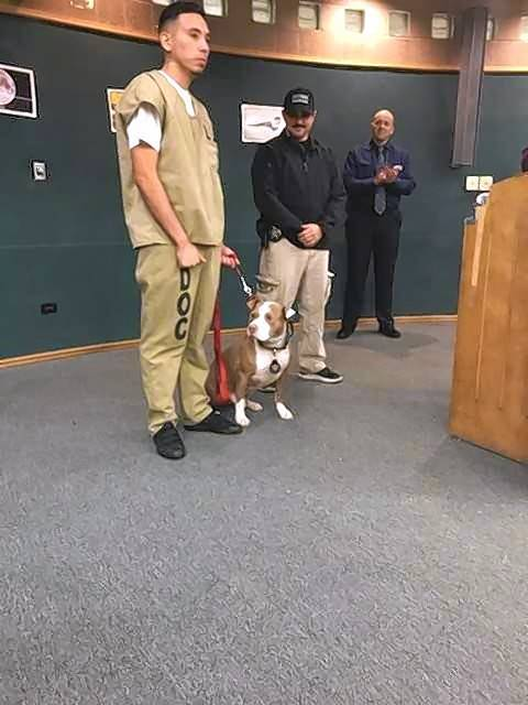A well-behaved Dutch, with his trainer, at a ceremony marking Dutch's graduation from the Tails of Redemption program in the Cook County jail.