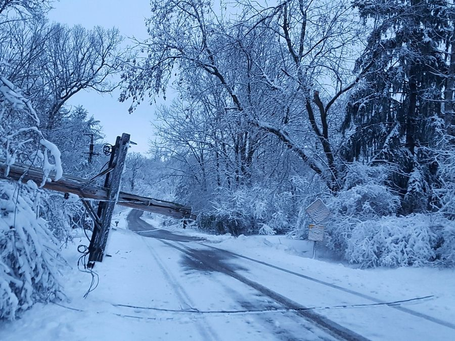 A utility pole came down during the blizzard on West Oakwood Drive in the Timberlake neighborhood north of Barrington.