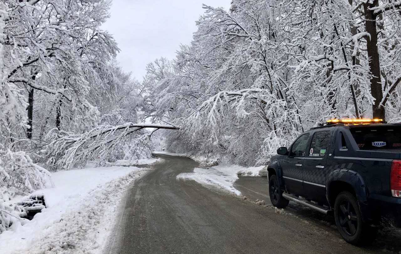 Members of the South Lake County Regional Community Emergency Response Team were called to clear downed limbs in Kildeer on Monday.