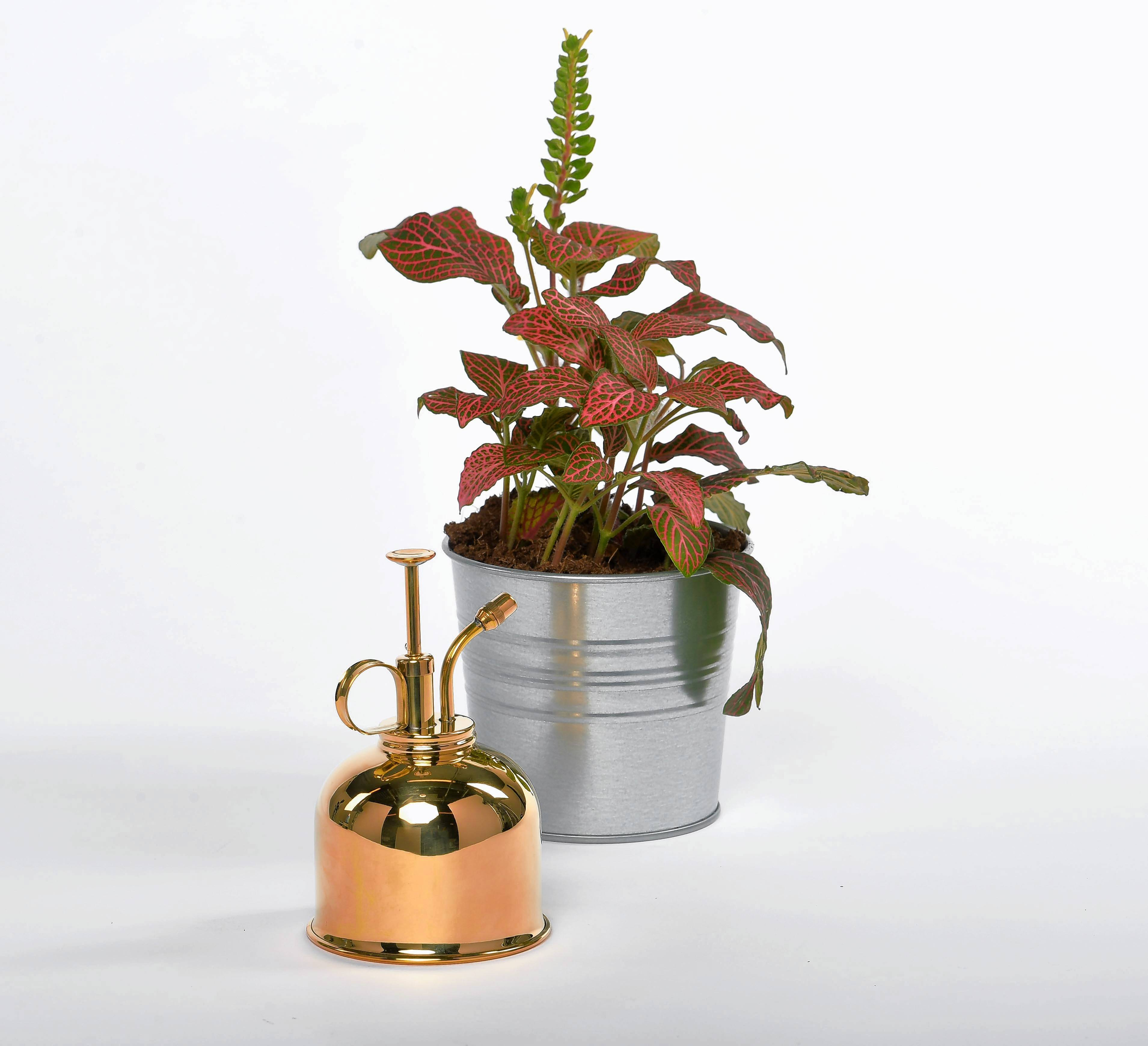 A 10-ounce plant mister in brass from Haws, $21.95, hawswateringcans.com. MUST CREDIT: Photo for The Washington Post by Katherine Frey