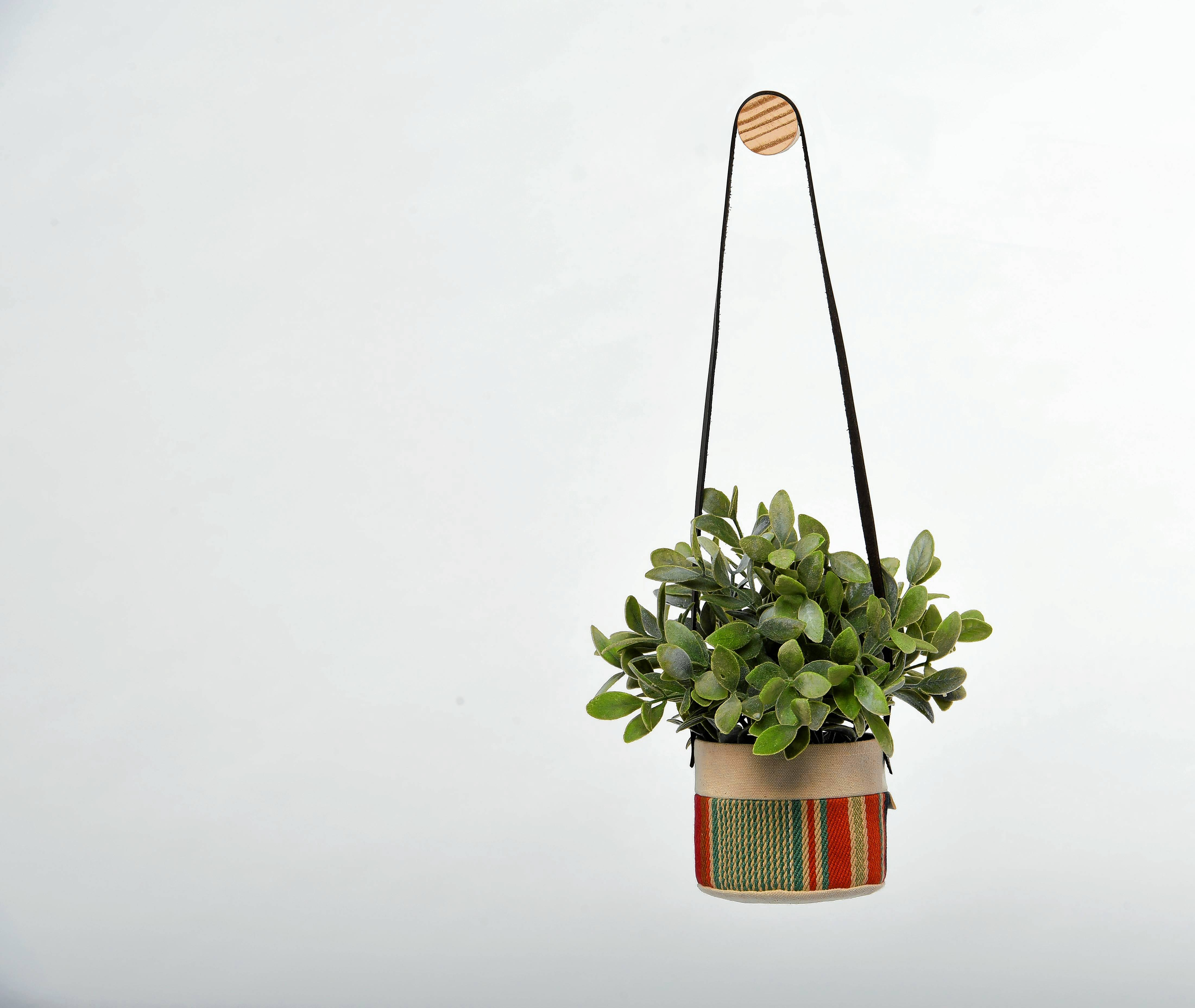 Small natural canvas hanging planter by Good Company Wares, $34, beinggoodcompany.com. MUST CREDIT: Photo for The Washington Post by Katherine Frey