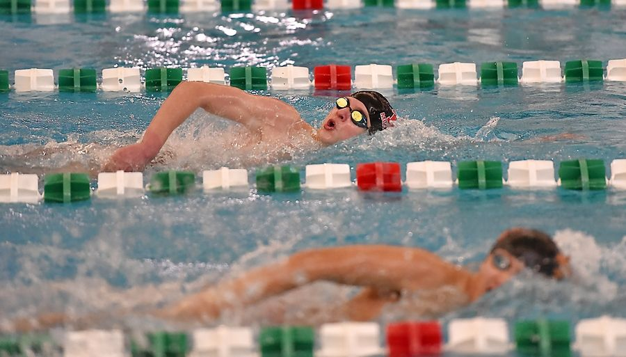 Mundelein's Aaron Anastos swims in the 200-yard freestyle at the Lake County boys swimming meet at Stevenson High School in Lincolnshire Saturday.