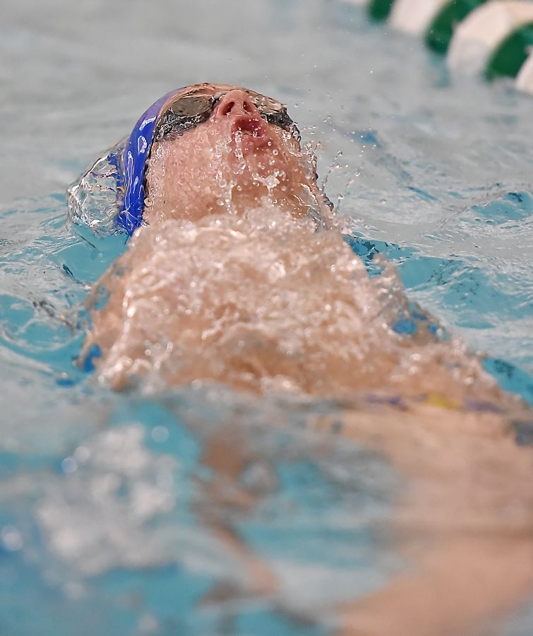 Warren Township's Nathan Heuberger swims in the 200-yard individual medley at the Lake County boys swimming meet at Stevenson High School in Lincolnshire Saturday.