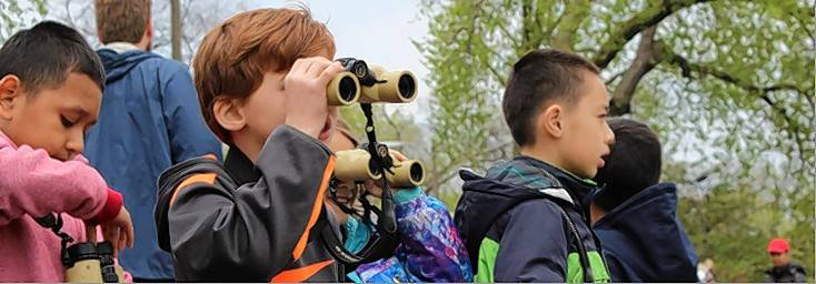 Birds in My Neighborhood, a program for second- through fifth-graders, needs adult instructors in Lake and McHenry counties.