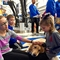 Therapy dogs, the gift of I-PASS, and other holiday travel tips