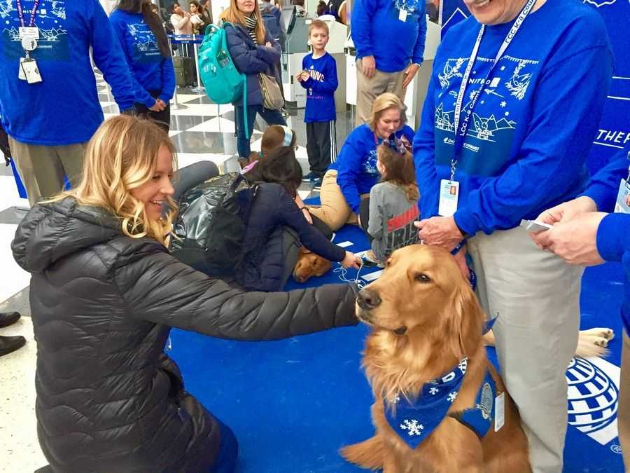 "United Airlines flight attendant Allison Herriot finds that therapy dog Malachi ""melts"" her stress away Friday at O'Hare International Airport."