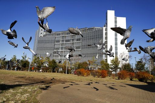 FILE - In this Dec. 25, 2018, file photo, pigeons fly near Tokyo Detention Center, where former Nissan chairman Carlos Ghosn and another former executive Greg Kelly, are being detained, in Tokyo. A Japanese news report says former Nissan chairman Ghosn will be detained at least through Jan. 11, 2019. Ghosn, who led Nissan Motor Co. for two decades saving the Japanese automaker from near bankruptcy, was arrested Nov. 19, 2018,  on suspicion of falsifying financial reports.