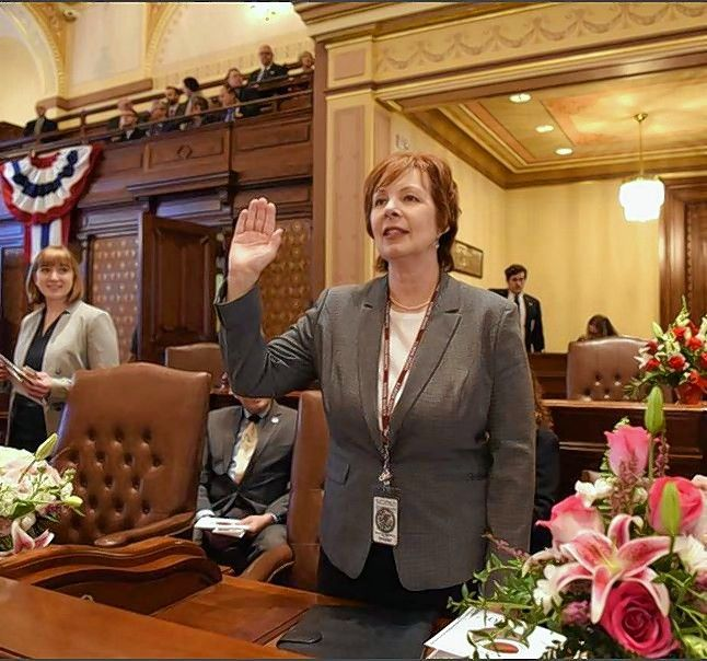 New state Sen. Ann Gillespie of Arlington Heights takes the oath of office Wednesday.