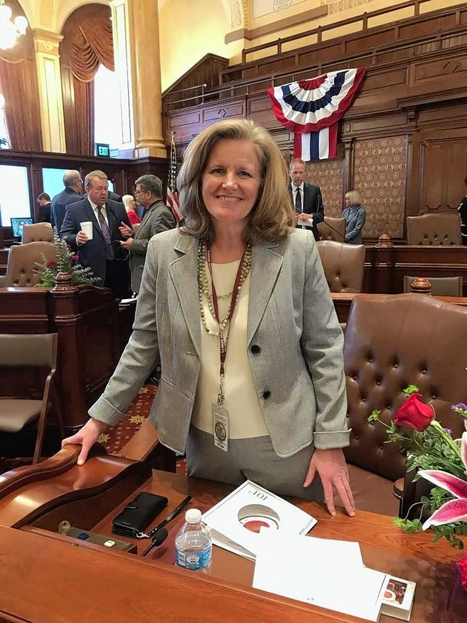 Democrat Laura Ellman of Naperville was sworn in as a new state senator on Wednesday.