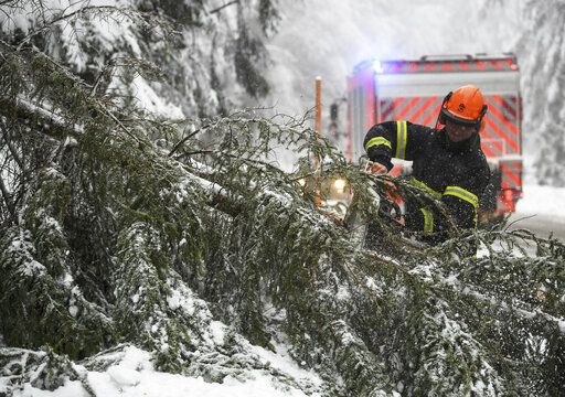 A firefighter removes a snow covered fallen tree on a road in Hofsgrund, Germany, Sunday, Jan. 13, 2019. (Patrick Seeger/dpa via AP)
