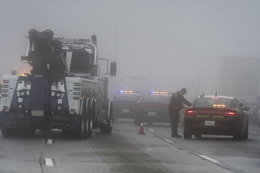 Falling tree kills man as storm lashes California