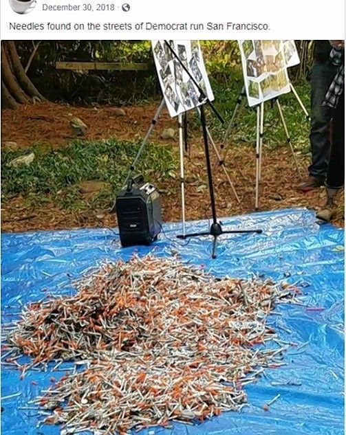 "A Facebook page falsely claimed a pile of used needles was collected in ""Democrat-run San Francisco,"" but it was from a volunteer effort in Everett, Washington."