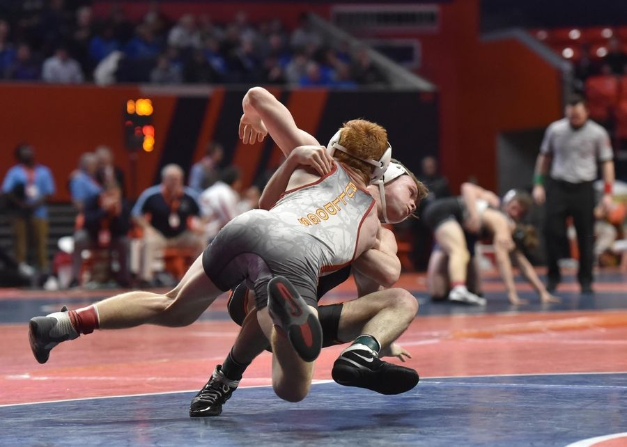 Libertyville's Michael Gunther and Batavia's Mikey Caliendo fall to the mat in the Class 3A 138-pound third place bout at the 2019 IHSA wrestling state championships at State Farm Arena at the University of Illinois in Champaign Saturday.