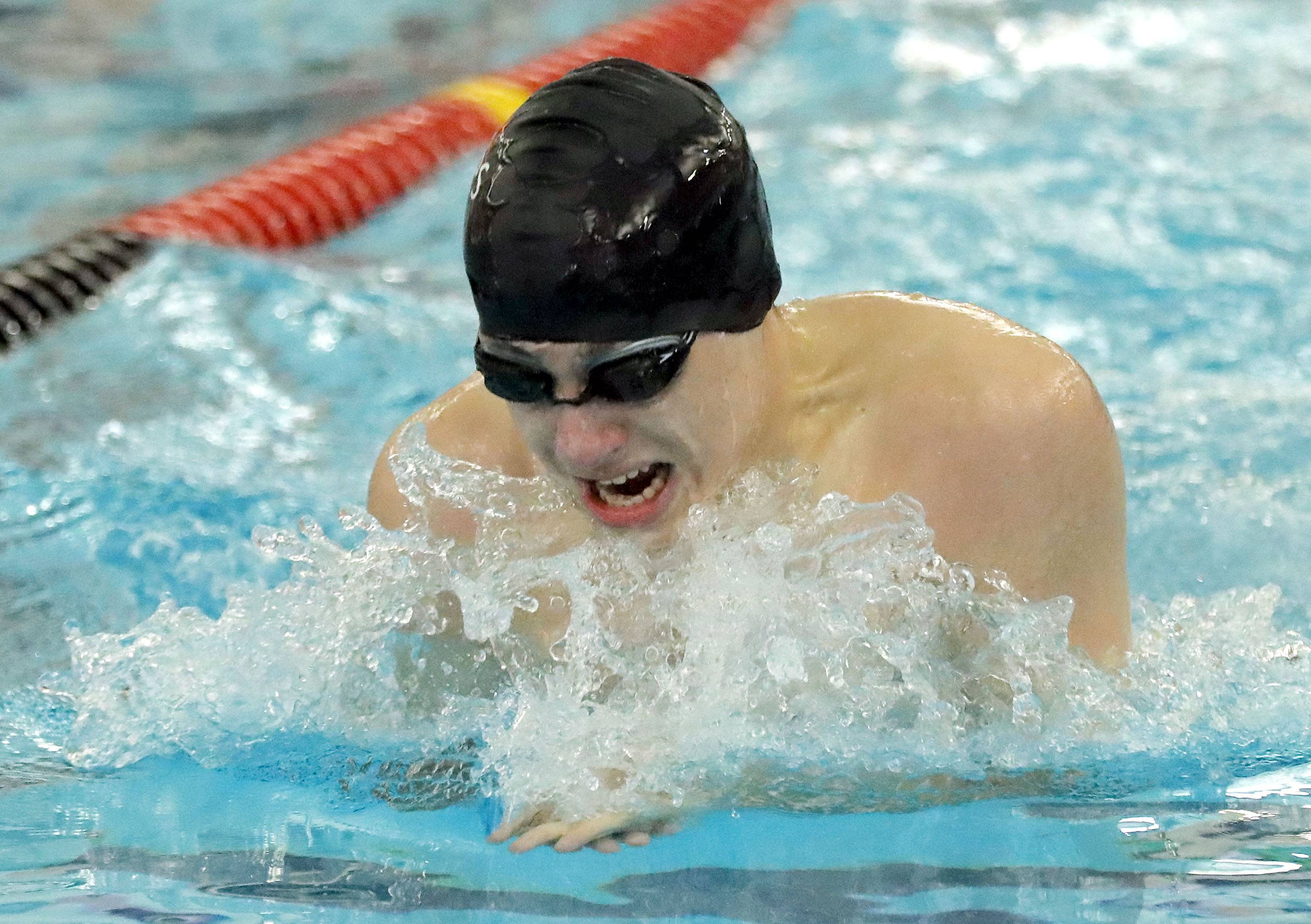Palatine's Stefan Filip swims in the 200-yard individual medley during boys sectional swimming at Barrington High School Saturday.