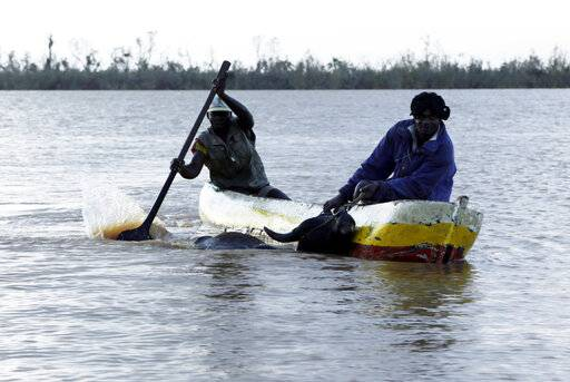 Two men rescue an animal using a boat in Buzi district, 200km outside Beira, Mozambique, Saturday, March 23, 2019. A second week has begun with efforts to find and help some tens of thousands of people in devastated parts of southern Africa, with some hundreds dead and an unknown number of people still missing.
