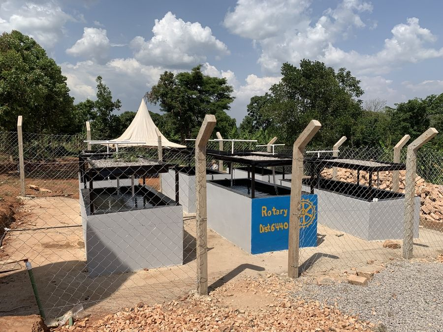 "The aquaponics project completed. ""This is a form of farm fishing,"" according to Rotarian Jim Wales of Lake in the Hills. ""The goal is that eventually the tanks will be mirrored by local villagers, as a way that they can bring themselves out of poverty."""