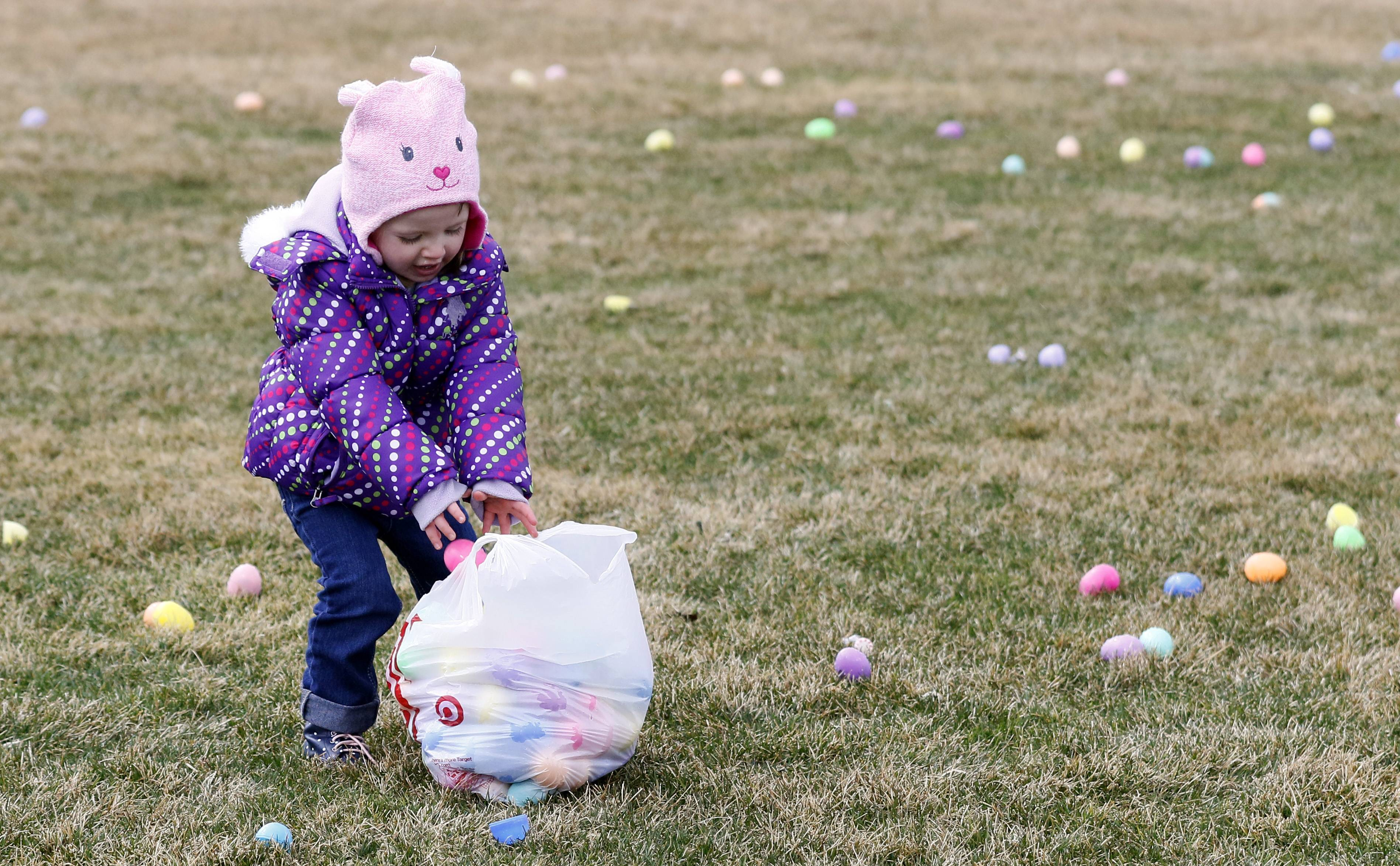 Isabelle VanMilligen, 2, of Bolingbrook fills her bag full of eggs during the Naperville Jaycees annual egg hunt at the Frontier Park Sports Complex.