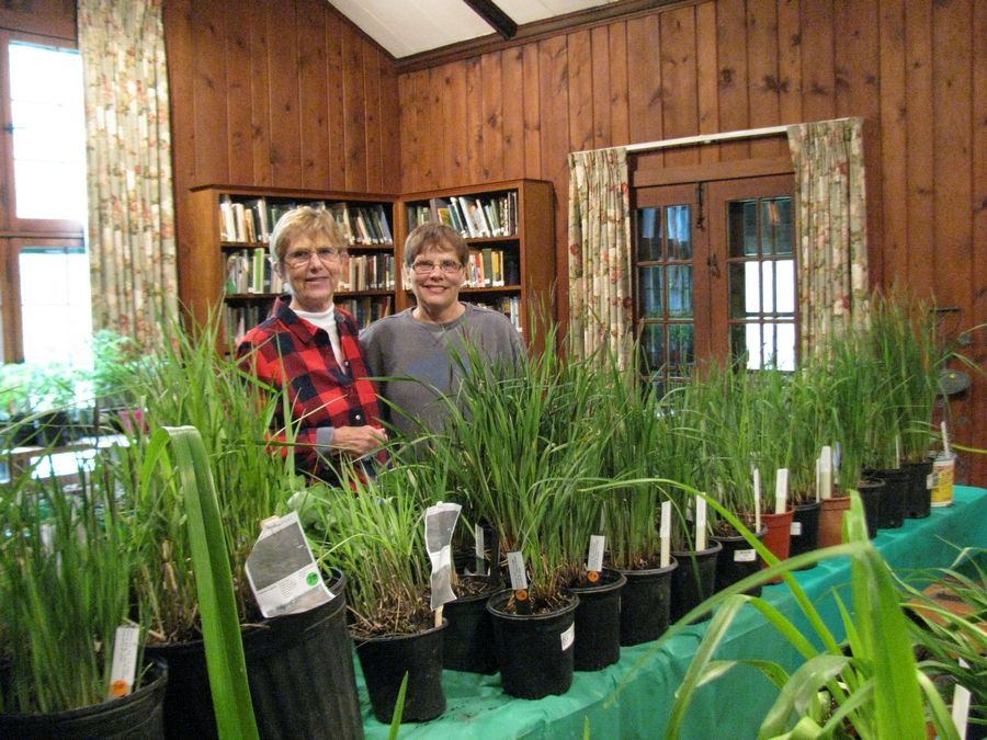 Long Grove-Kildeer Garden Club members LaRayne Scharm and Kathy Michas sell plants during a previous plant sale at Reed Turner Nature Center in Long Grove.