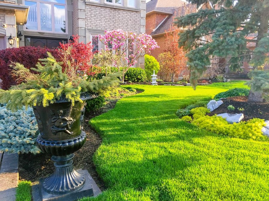 Remove any dead leaves, dead foliage and debris from your yard that can smother the lawn and leave dead patches this spring.