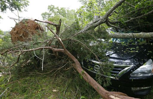 Tree limbs await removal so insurance adjusters can review the damage from Saturday's storm, in Flora, Miss., Sunday, April 14, 2019. The storm was one of several that hit the state.