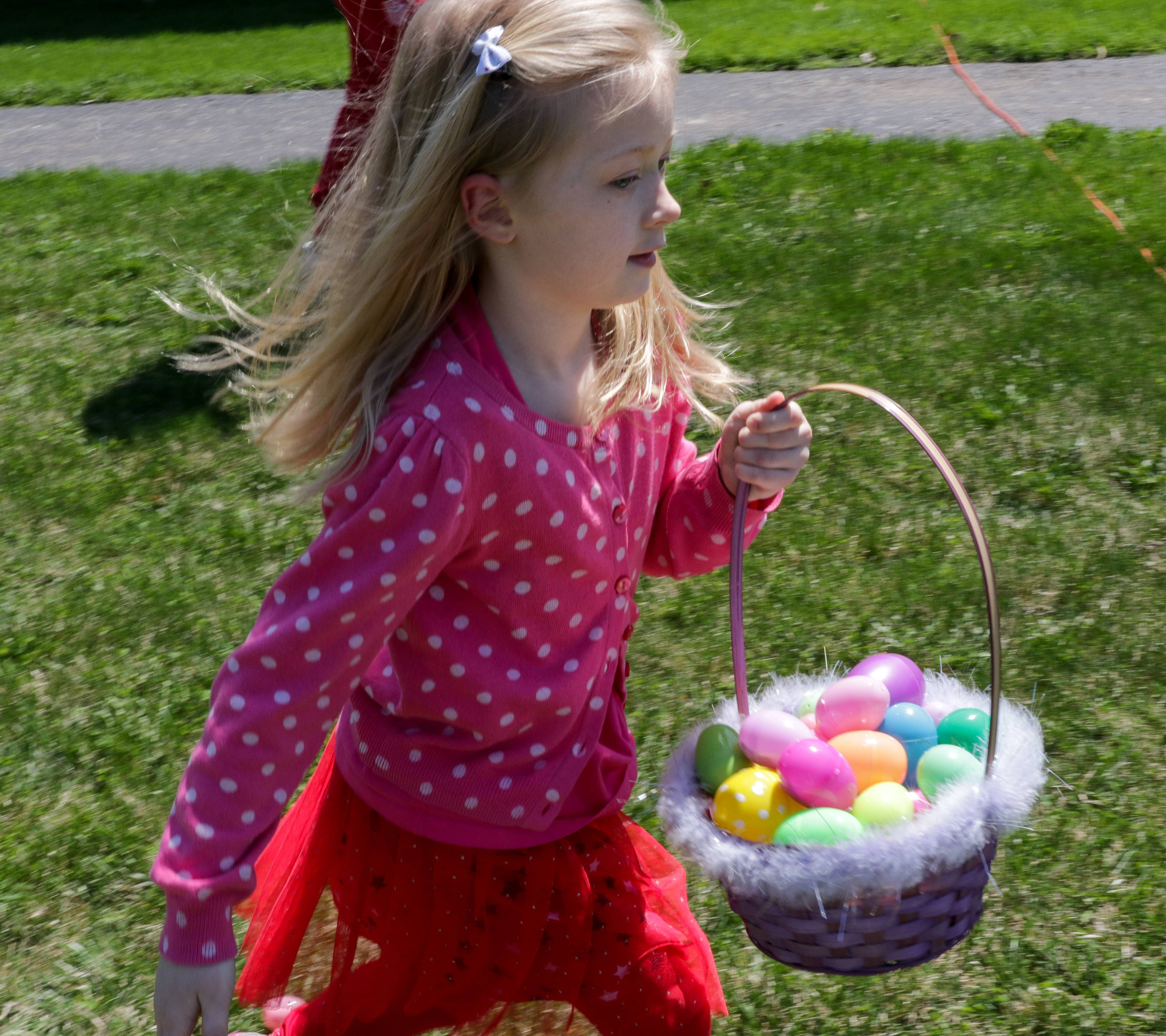Alice Popa, 7, of Rolling Meadows collects a basketful of eggs Sunday during the Easter egg hunt at Cardinal Drive Church of Christ in Rolling Meadows.