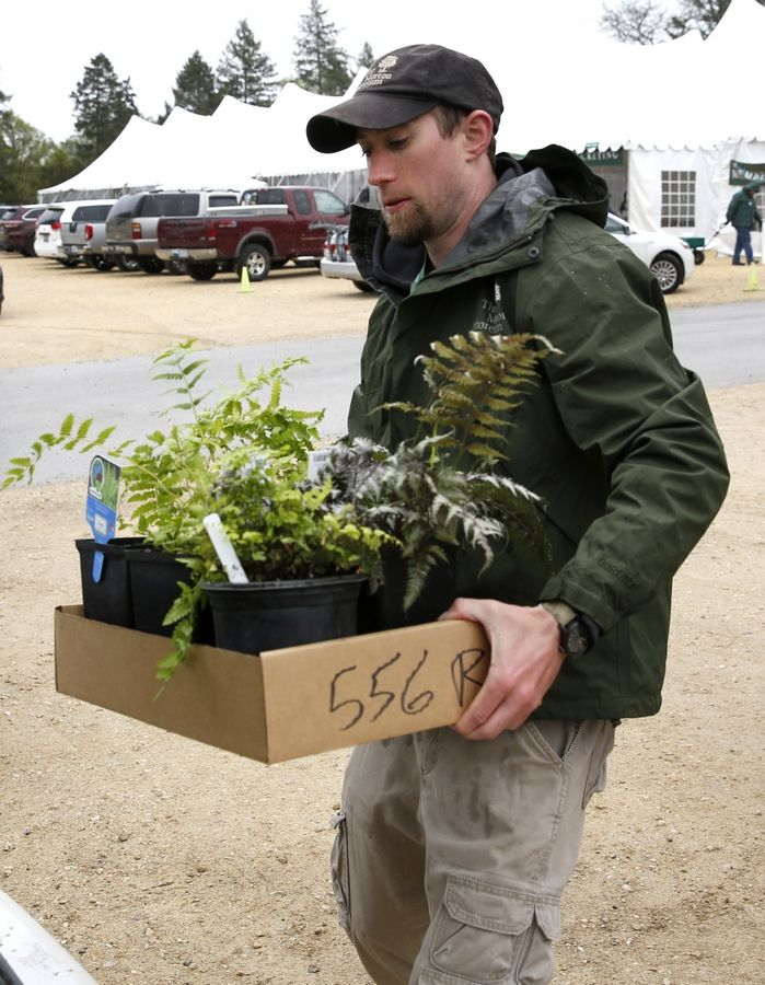 Ben Cascarano of the Morton Arboretum helps a customer load plants purchased during the Morton Arboretum Arbor Day Weekend plant sale. This year's sale takes place April 26-28.