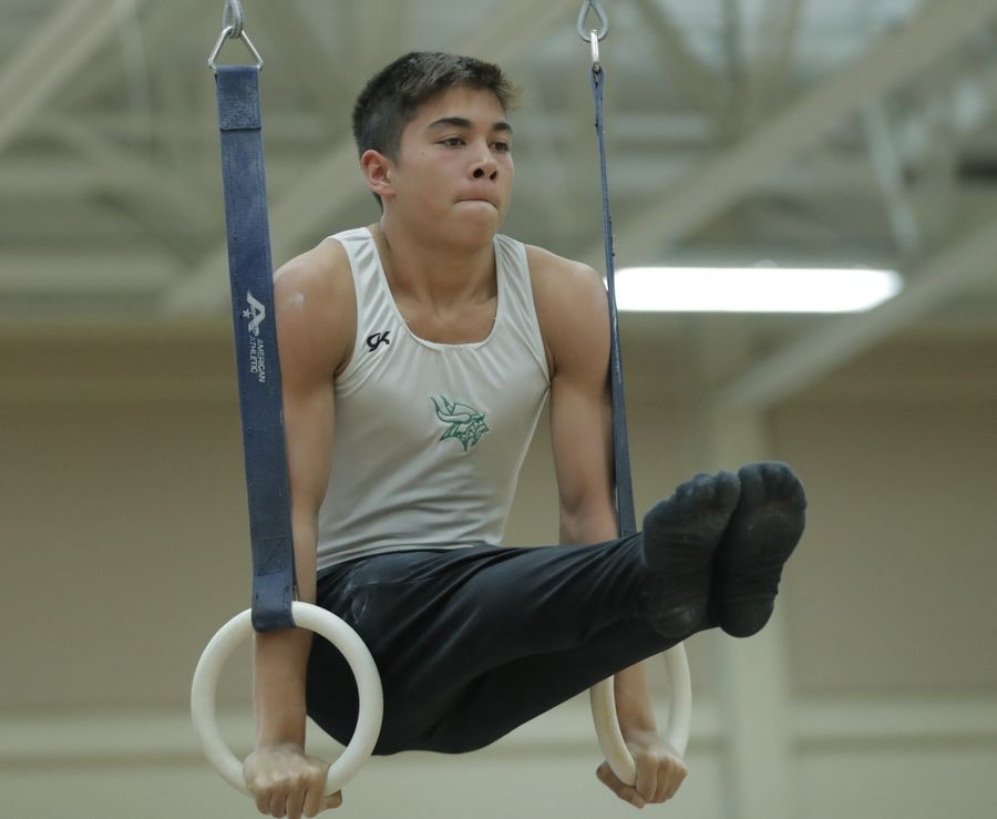 Fremd's Darien Goodchild competes on the still rings during boys sectional gymnastics Wednesday at Libertyville High School.