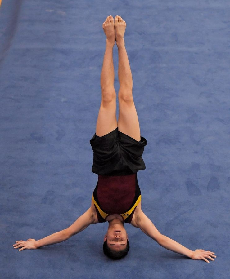 Schaumburg's Brandon Nyborg on the floor exercise at the state boys gymnastics tournament in Hoffman Estates Friday.