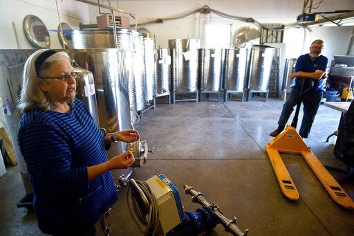 In this Friday, April 26, 2019 photo, Mary Hofmann, left, explains operations at Sunset Lake Vineyards & Winery in rural Carlock, Ill. (Lewis Marien/The Pantagraph via AP)