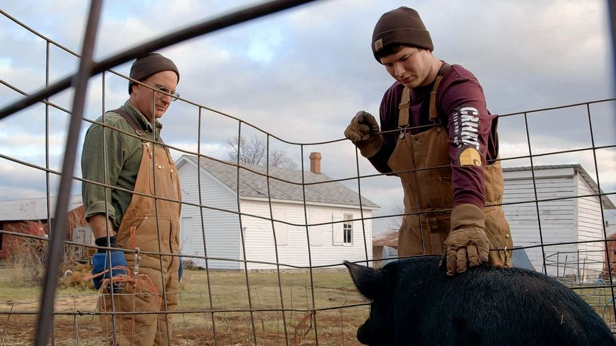 "Marty Travis and his son, Will, tend to the guinea hogs during winter chores at Spence Farm in Livingston, Ill., in the 2016 documentary ""Sustainable."""
