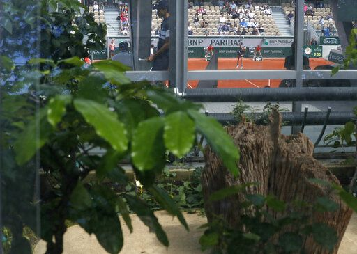Tropical plants in the greenhouses that surround the new Simonne Mathieu court are seen as Spain's Garbine Muguruza serves against Taylor Townsend of the U.S. during their first round matches of the French Open tennis tournament at the Roland Garros stadium in Paris, Sunday, May 26, 2019.
