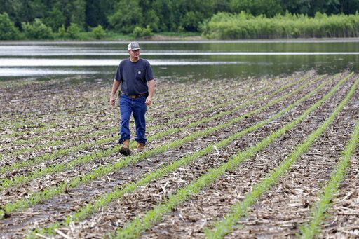 In this May 29, 2019 photo, Jeff Jorgenson looks over a partially flooded field he farms near Shenandoah, Iowa. About a quarter of his land was lost this year to Missouri River flooding, and much of his remaining property has been inundated with heavy rain and water from the neighboring Nishnabotna River.