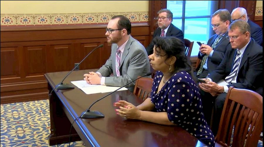 Reps. Daniel Didech, D-Buffalo Grove, and Rita Mayfield, D-Waukegan, explain the function of a property tax relief fund that would be created under a bill they sponsor. They testified Tuesday to a House committee at the Capitol in Springfield.
