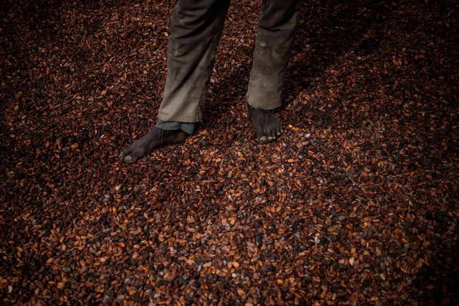 A worker stands on dried cocoa beans outside an Ivory Coast cooperative facility. About two-thirds of the world's cocoa supply comes from West Africa.