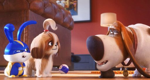 "Snowball, voiced by Kevin Hart, left, and Daisy, voiced by Tiffany Haddish, talk with Pops, voiced by Dana Carvey, in ""The Secret Life of Pets 2."""