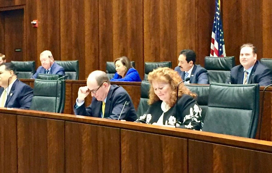 Members of the Senate Executive Appointments Committee listen to testimony before voting on tollway directors Wednesday.