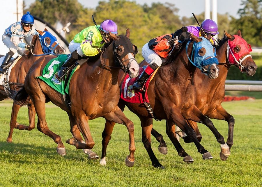 For Father's Day, take Dad to the races at Arlington International Racecourse.