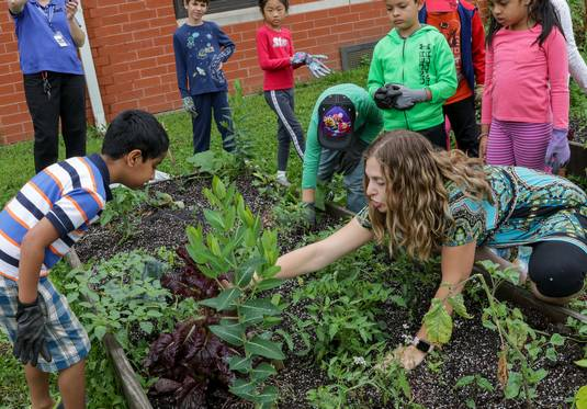 Shawn Sherry, 7, watches teacher Melissa Eaton point out plants growing in a community garden at Cowlishaw Elementary School in Naperville, where the garden is a lab for English language lessons.